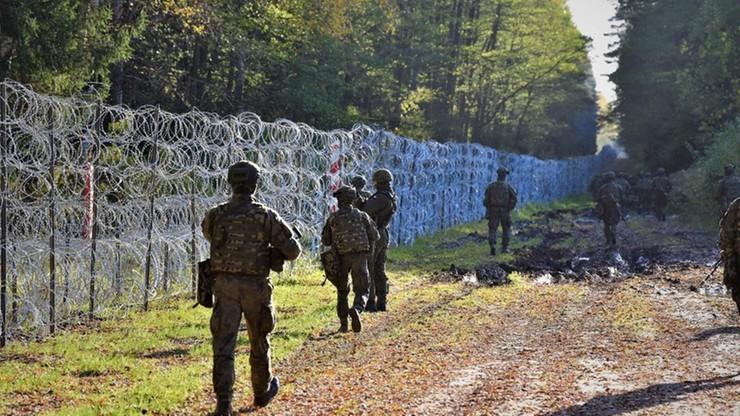 """Niemiecki minister skomentował budowę muru na polskiej granicy. """"To musi być kontrolowane"""""""